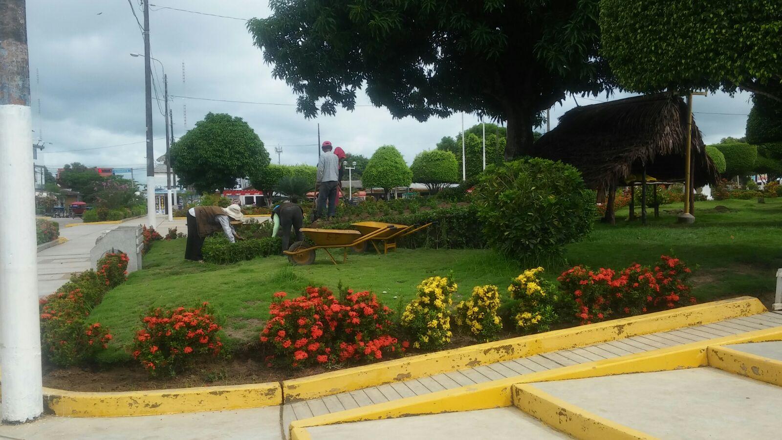 Muniyarinacocha parques y jardines for Parques y jardines